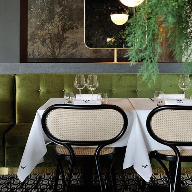 AKI AGENCY | GTV 'Bodystuhl' designed by Nigel Coates #gebrüderthonetvienna #akiagency #gtv #vienna #italy #hotelinteriordesign #restaurantinteriors #luxury #diningchair #quality #interiordesign #interieurarchitect #thonetvienna info@akiagency.nl