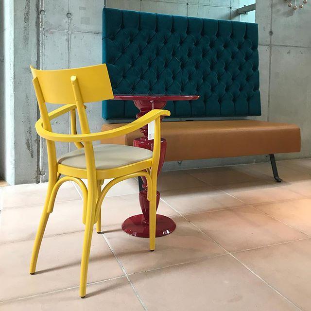 AKI | GTV : Seen at @vos_interieur Czech armchair . #vosinterieur #groningen #gtv #aki #gebruederthonetvienna #akiagency #vienna #torino #gtvdealer #nice #presentation #interiordesign #interieurarchitect #architect #originals #yellow #inspiration info@akiagency.nl0031-651561603